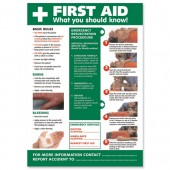 SS FirstAid Laminated Poster HS101