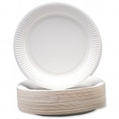 R/Young 7in Paper Plates 1641 Pk100