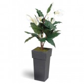 2*Articial Plant Peace Lily.