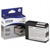 Epson Inkjet Cart Photo Black C13T580100