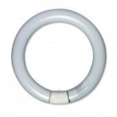 &ULX Circ Fluo Tube 12W FC012G10Q
